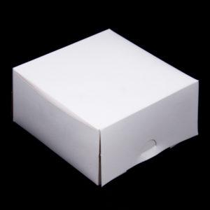 CAKE001_R0_90_5X5X2_5.jpg